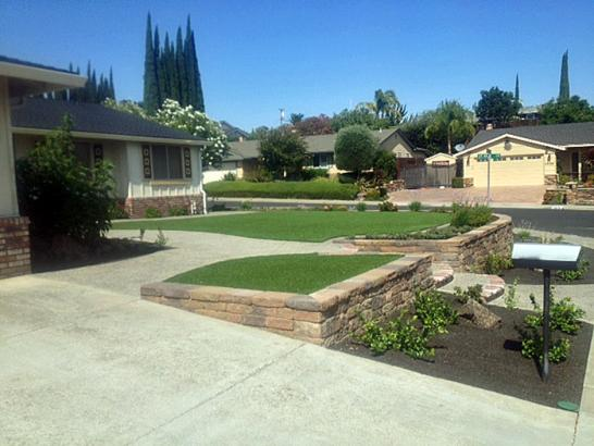 Artificial Grass Photos: Artificial Grass Carpet Alamosa East, Colorado Landscape Design, Front Yard Landscape Ideas