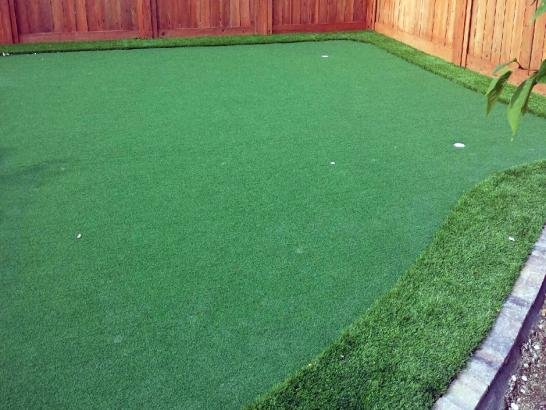 Artificial Grass Photos: Artificial Grass Carpet Carriage Club, Colorado Garden Ideas, Backyard Landscaping
