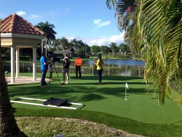 Artificial Grass Photos: Artificial Grass Carpet Centennial, Colorado Putting Green Flags, Backyard Landscaping Ideas
