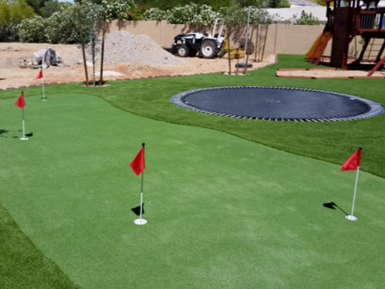 Artificial Grass Carpet Dinosaur, Colorado Office Putting Green, Backyard Designs artificial grass