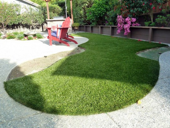 Artificial Grass Photos: Artificial Grass Carpet Eckley, Colorado Landscape Photos, Backyard Garden Ideas