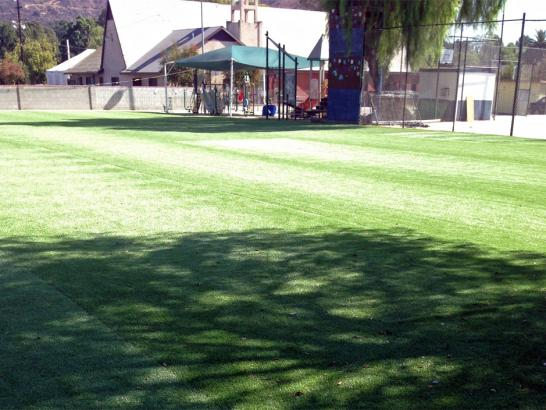 Artificial Grass Photos: Artificial Grass Carpet Orchard City, Colorado Soccer Fields, Parks