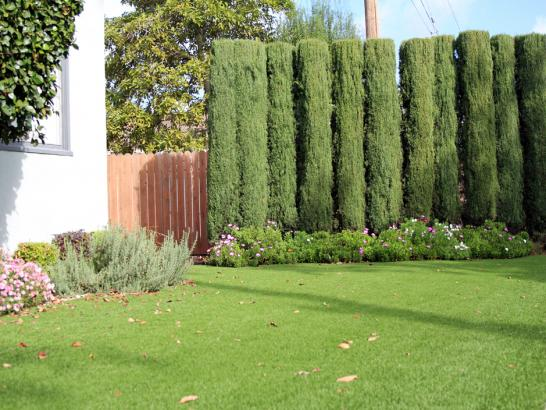 Artificial Grass Photos: Artificial Grass Installation Campion, Colorado Gardeners, Front Yard Landscaping