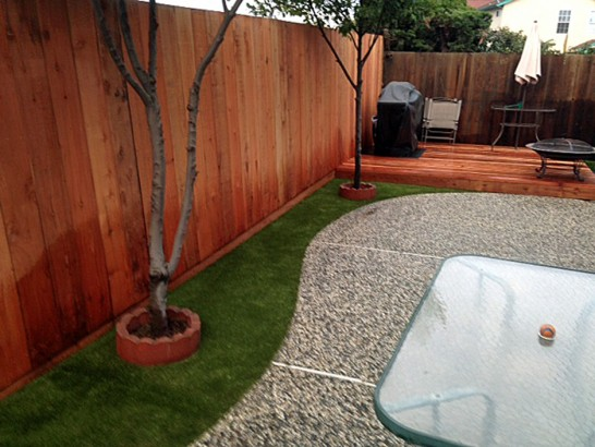 Artificial Grass Photos: Artificial Grass Johnson Village, Colorado Lawns, Backyard Ideas