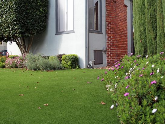Artificial Grass Photos: Artificial Lawn La Veta, Colorado Landscape Design, Front Yard