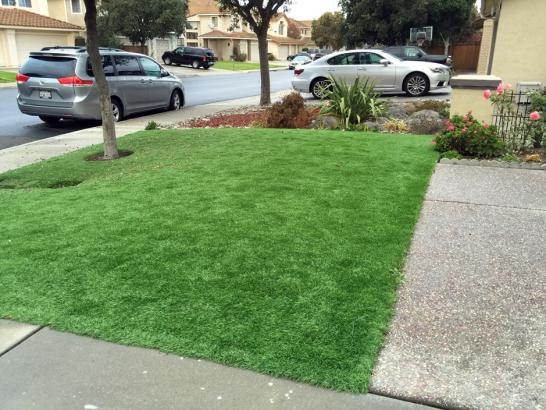 Artificial Grass Photos: Artificial Lawn Platteville, Colorado Landscaping, Landscaping Ideas For Front Yard