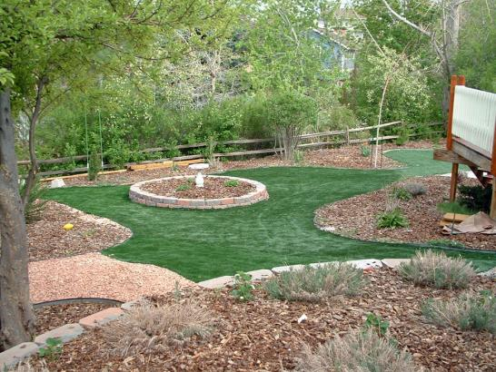 Artificial Grass Photos: Artificial Lawn Wellington, Colorado Backyard Playground, Backyard