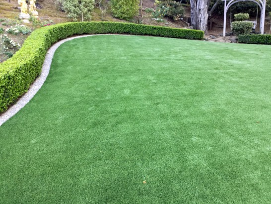 Artificial Grass Photos: Artificial Turf Chacra, Colorado Gardeners, Backyard Landscape Ideas