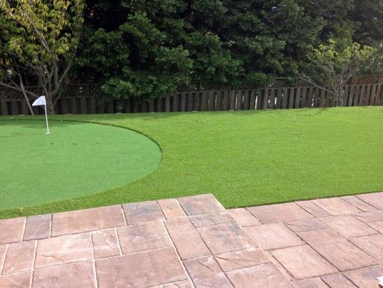 Artificial Grass Photos: Artificial Turf Cost Bayfield, Colorado Golf Green, Backyard Landscape Ideas