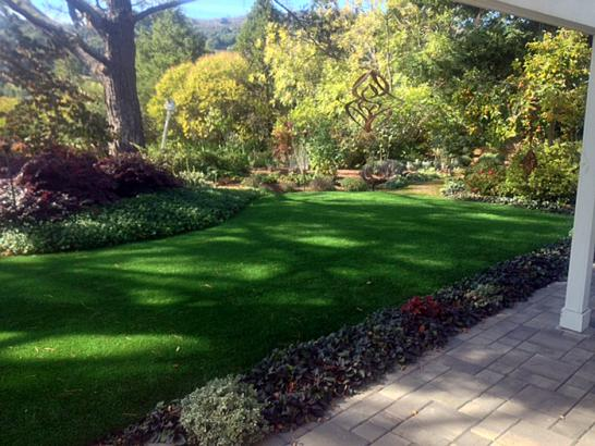 Artificial Grass Photos: Artificial Turf Cost Orchard Mesa, Colorado Lawn And Landscape, Backyards