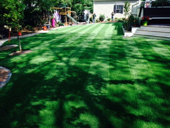 Artificial Grass Photos: Artificial Turf Cost Rangely, Colorado Roof Top, Backyard