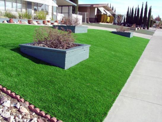Artificial Grass Photos: Artificial Turf Installation Stratton, Colorado Landscape Design, Small Front Yard Landscaping