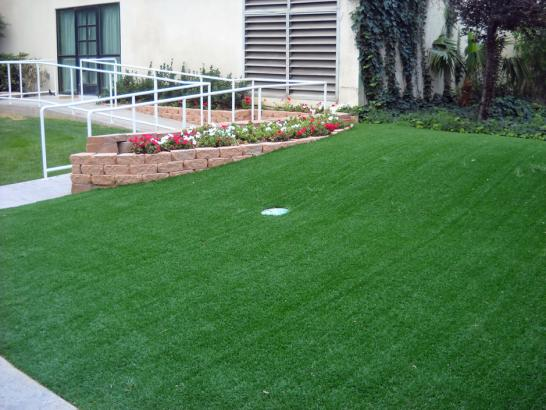 Artificial Grass Photos: Artificial Turf Installation Todd Creek, Colorado Putting Greens, Front Yard Ideas