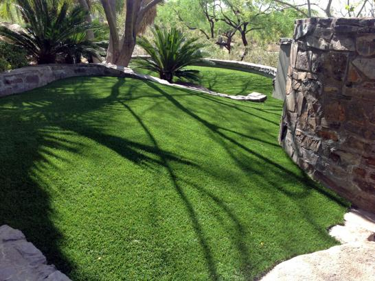 Artificial Grass Photos: Best Artificial Grass Dotsero, Colorado Cat Grass
