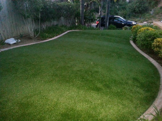 Artificial Grass Photos: Best Artificial Grass Holly, Colorado Landscaping, Front Yard Landscaping