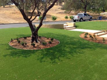 Artificial Grass Photos: Best Artificial Grass Idledale, Colorado Home And Garden, Pool Designs