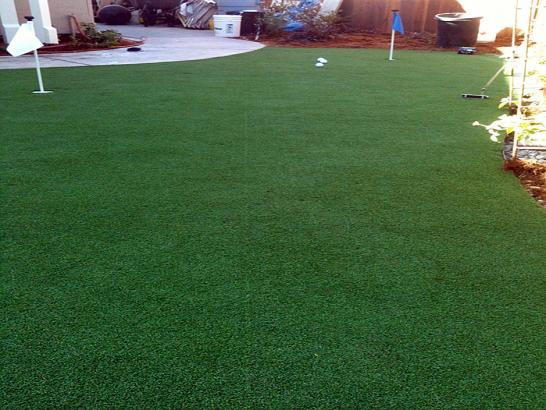 Artificial Grass Photos: Best Artificial Grass Naturita, Colorado Roof Top, Backyard Makeover