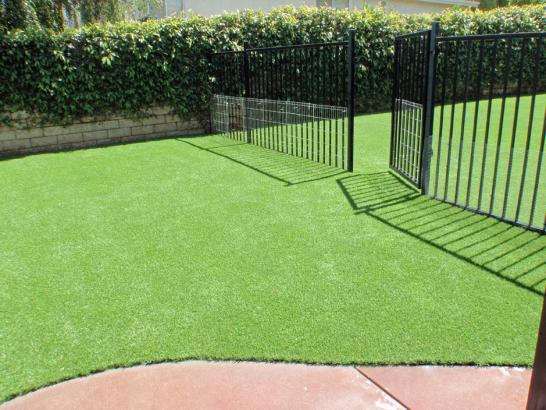 Artificial Grass Photos: Best Artificial Grass Security-Widefield, Colorado Landscaping Business, Landscaping Ideas For Front Yard