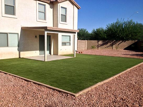 Artificial Grass Photos: Best Artificial Grass Victor, Colorado Landscaping, Backyards