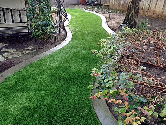 Artificial Grass Photos: Best Artificial Grass Williamsburg, Colorado Backyard Playground, Backyard