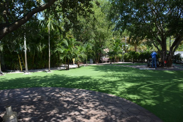 Artificial Grass | Can You Tell Real or Fake? 19 out of 20 people make a mistake...