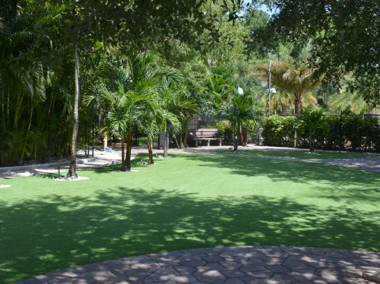 Artificial Grass Photos: Fake Grass Carpet Aguilar, Colorado Lawns, Commercial Landscape