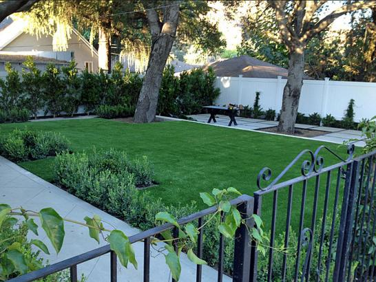 Artificial Grass Photos: Fake Grass Carpet Bark Ranch, Colorado Home And Garden, Front Yard Landscaping