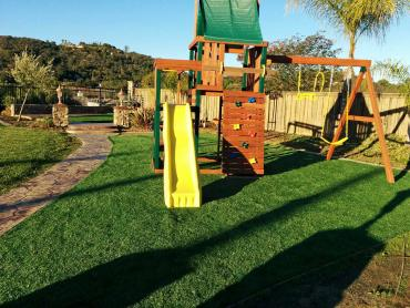 Artificial Grass Photos: Fake Grass Carpet Castlewood, Colorado Landscaping, Backyard Design