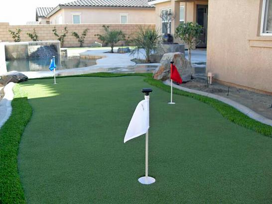 Artificial Grass Photos: Fake Grass Carpet Fort Carson, Colorado Backyard Playground, Backyard Landscape Ideas