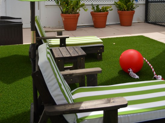 Artificial Grass Photos: Fake Grass Carpet Hayden, Colorado Garden Ideas, Patio