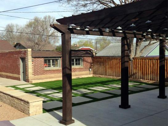 Artificial Grass Photos: Fake Grass Carpet Leadville North, Colorado City Landscape, Backyard Designs