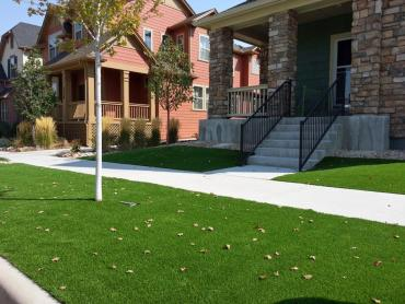 Artificial Grass Photos: Fake Grass Columbine Valley, Colorado Landscape Rock, Front Yard Ideas
