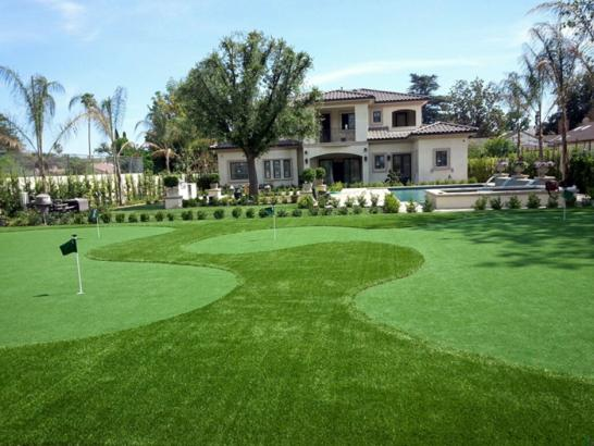 Artificial Grass Photos: Fake Lawn Cottonwood, Colorado Lawn And Landscape, Front Yard Ideas