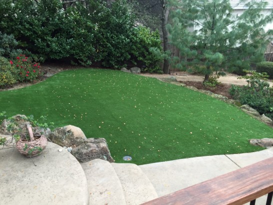 Artificial Grass Photos: Fake Lawn Iliff, Colorado Landscaping, Backyard Landscape Ideas
