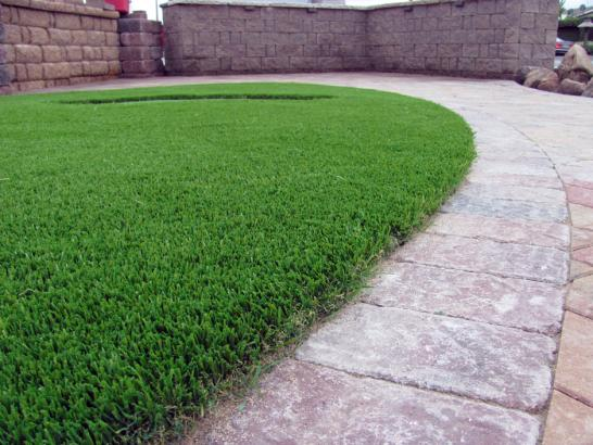 Artificial Grass Photos: Fake Lawn Vineland, Colorado Home And Garden, Pavers
