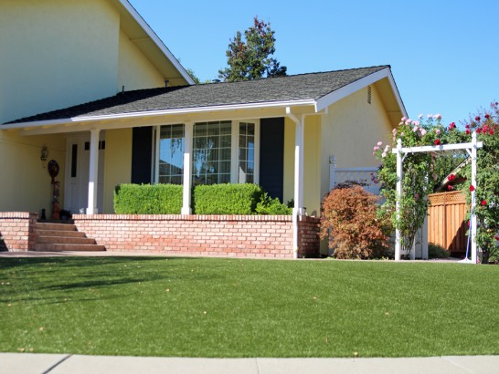 Artificial Grass Photos: Fake Lawn Vineland, Colorado Landscaping, Front Yard