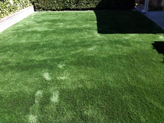 Artificial Grass Photos: Fake Turf Bethune, Colorado Hotel For Dogs, Backyard Design