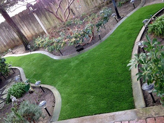 Artificial Grass Photos: Fake Turf Blende, Colorado Roof Top, Backyards