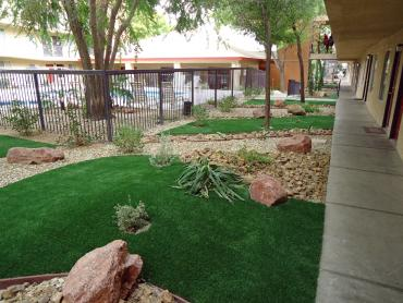 Artificial Grass Photos: Fake Turf Cottonwood, Colorado Gardeners, Commercial Landscape