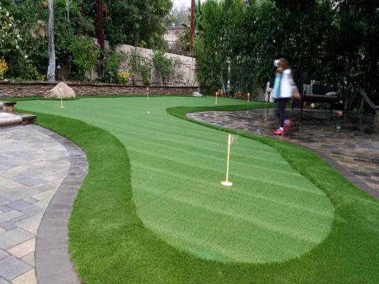 Artificial Grass Photos: Fake Turf Lone Tree, Colorado Landscape Ideas, Backyard Design