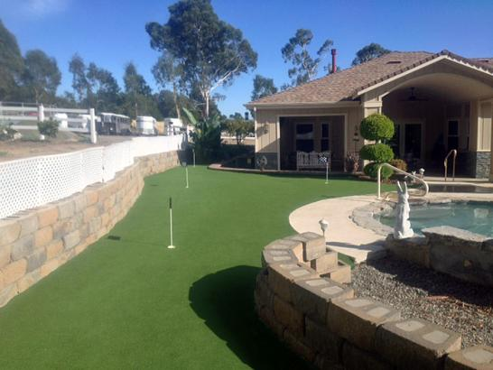 Artificial Grass Photos: Fake Turf Twin Lakes, Colorado Outdoor Putting Green, Beautiful Backyards