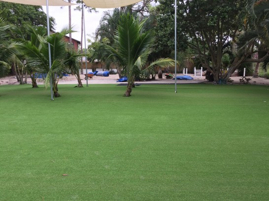 Artificial Grass Photos: Fake Turf Wiley, Colorado Lawn And Landscape, Commercial Landscape