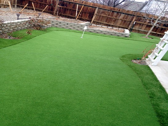 Artificial Grass Photos: Faux Grass Canon City, Colorado Lawn And Landscape, Backyard