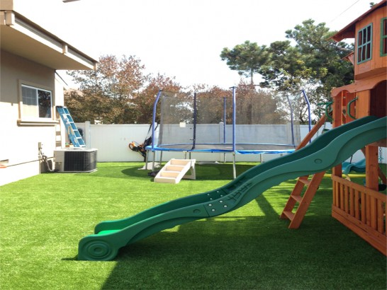 Artificial Grass Photos: Faux Grass Carbondale, Colorado Playground Safety, Backyard