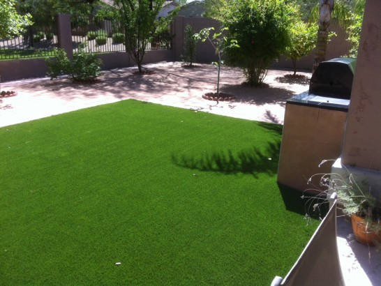 Artificial Grass Photos: Faux Grass North La Junta, Colorado Lawns, Backyard
