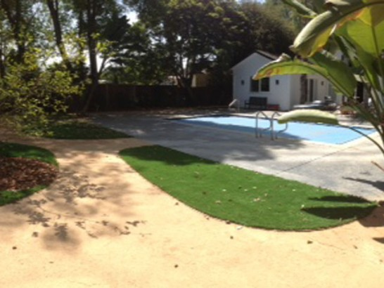 Artificial Grass Photos: Faux Grass Rico, Colorado Landscape Design, Backyard Ideas