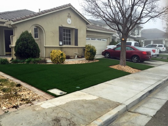 Artificial Grass Photos: Faux Grass Stratton, Colorado Home And Garden, Front Yard Landscaping Ideas