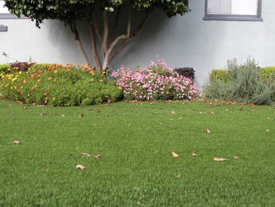 Artificial Grass Photos: Faux Grass Yuma, Colorado Lawns, Front Yard Landscape Ideas