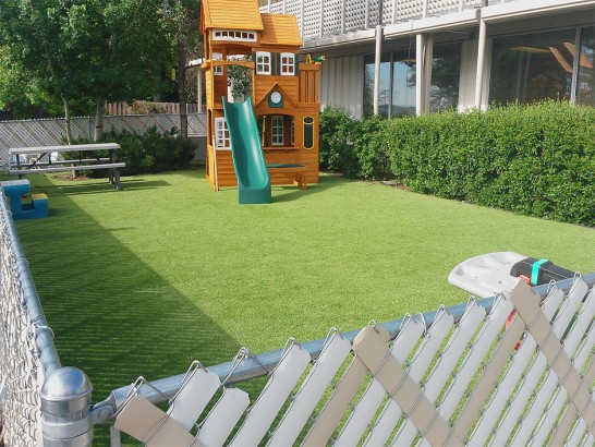 Artificial Grass Photos: Grass Carpet Basalt, Colorado Design Ideas, Backyard Garden Ideas