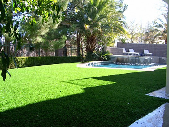 Artificial Grass Photos: Grass Carpet New Castle, Colorado Landscaping, Backyard Garden Ideas